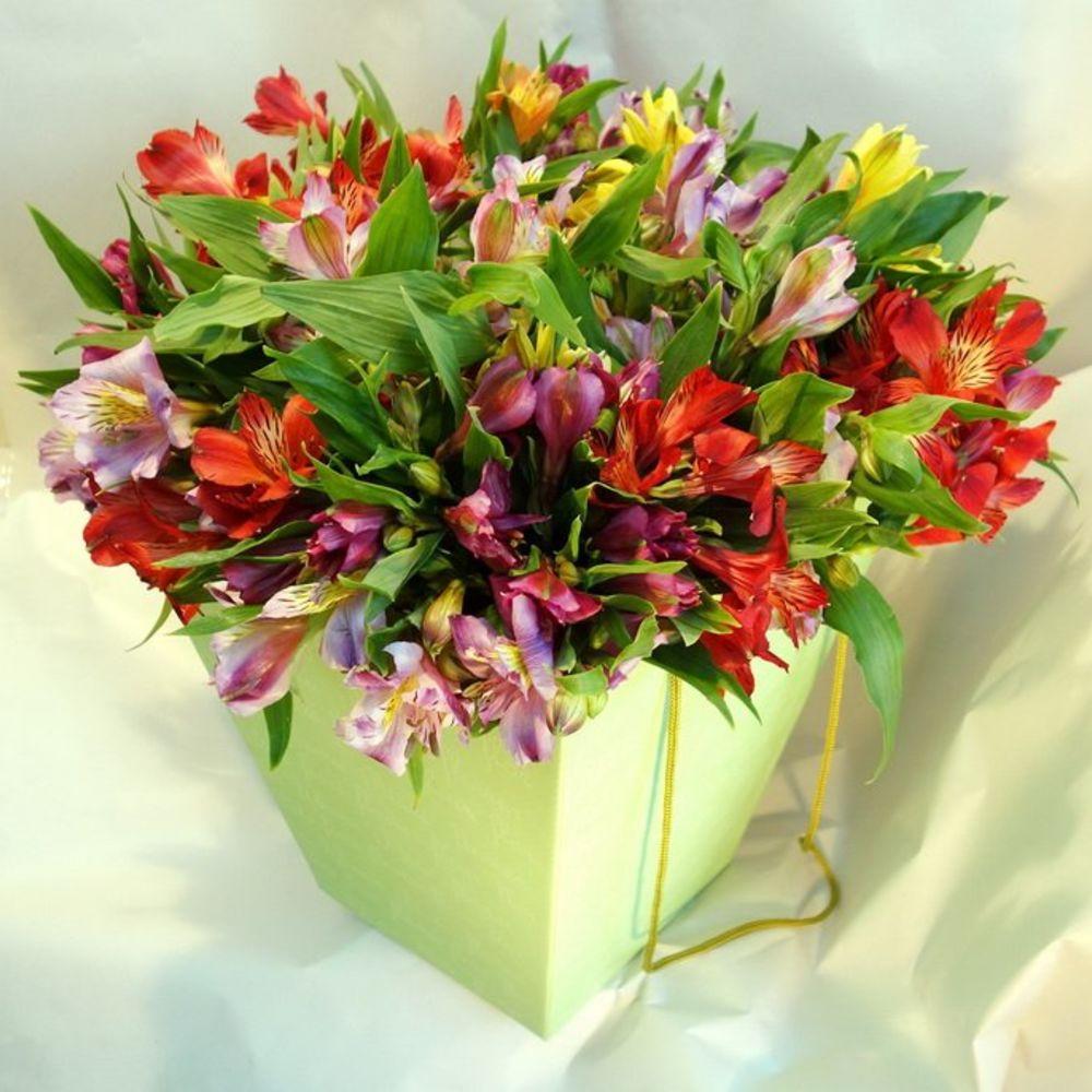 Заказ цветов сочи адлер, цветы сочи букет