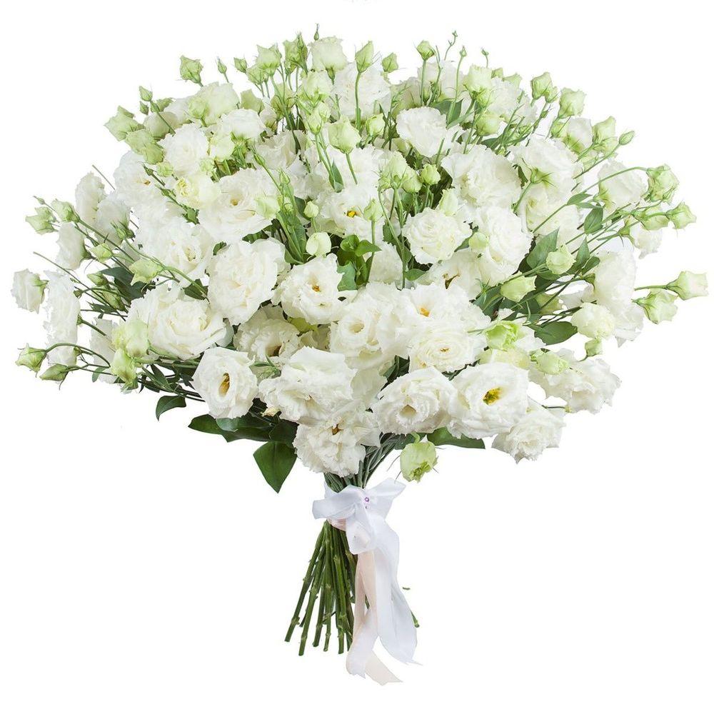 Челябинске, цветок эустома купить букет