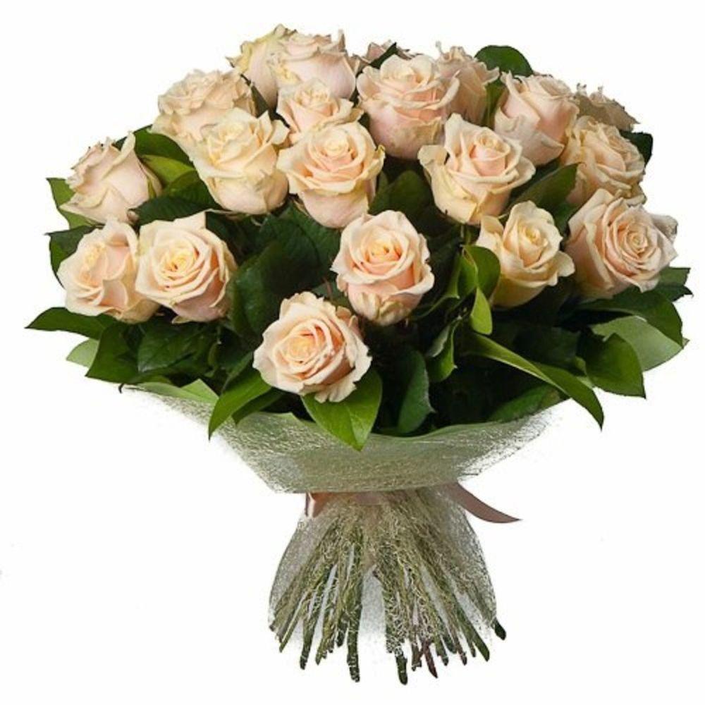 Чайная роза большие букеты цветов фото, цветов