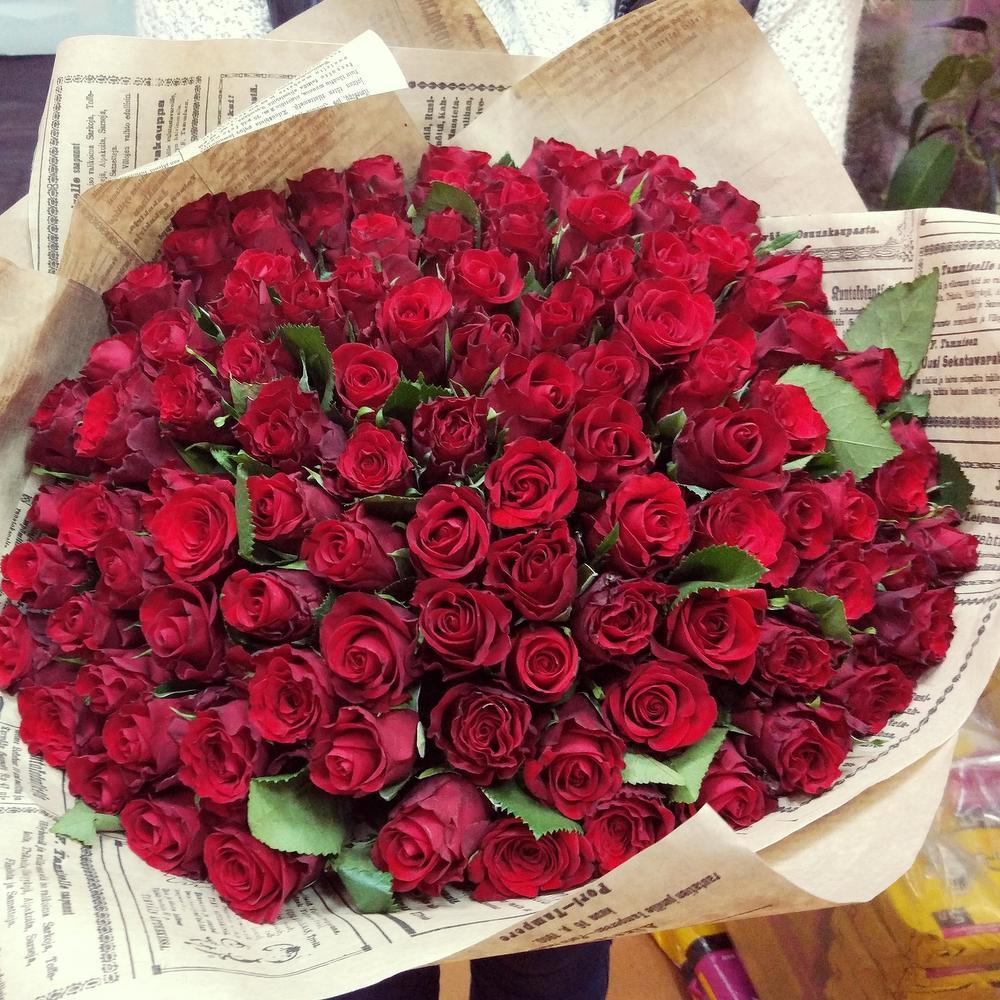 101 роза бордо для инночки картинки них только