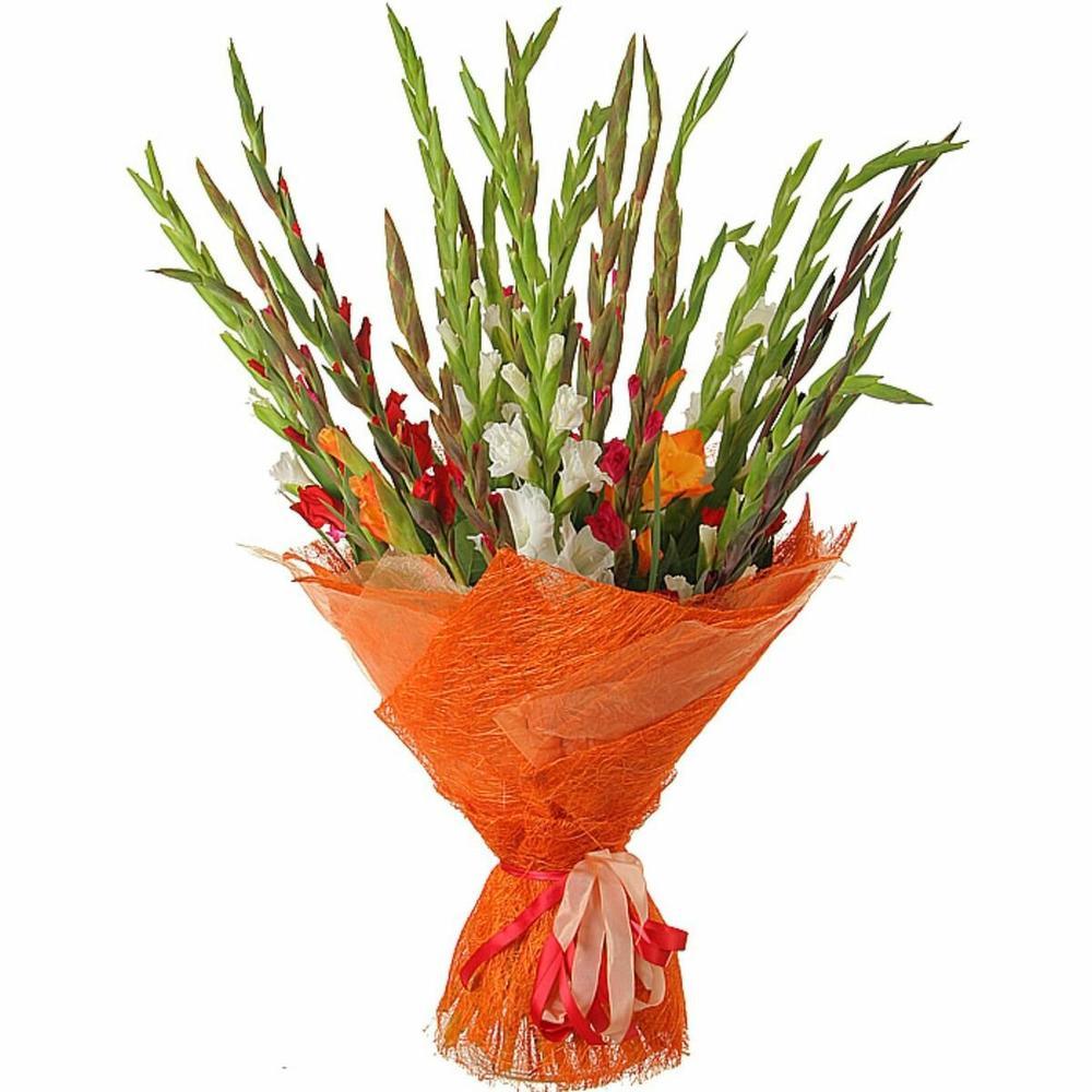 Цветов доставкой, доставка цветов гладиолусы