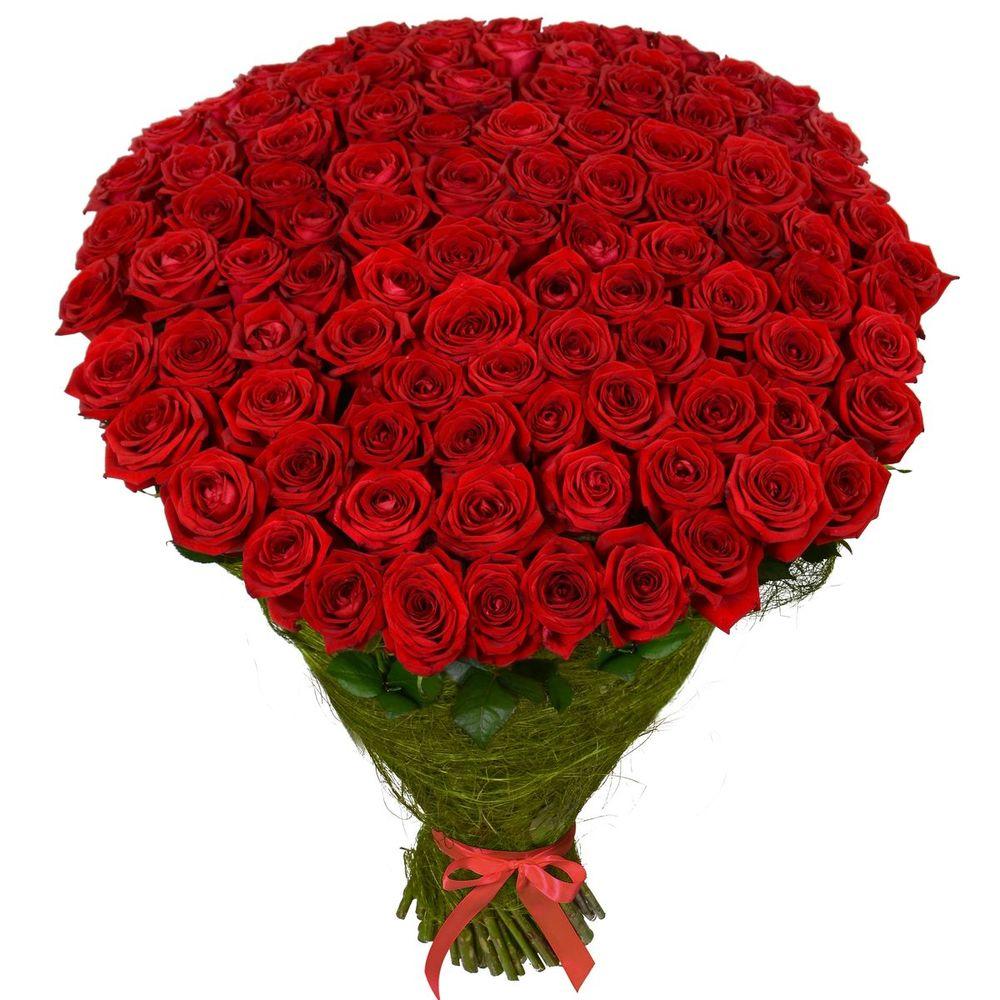 101 роза бордо для инночки картинки это