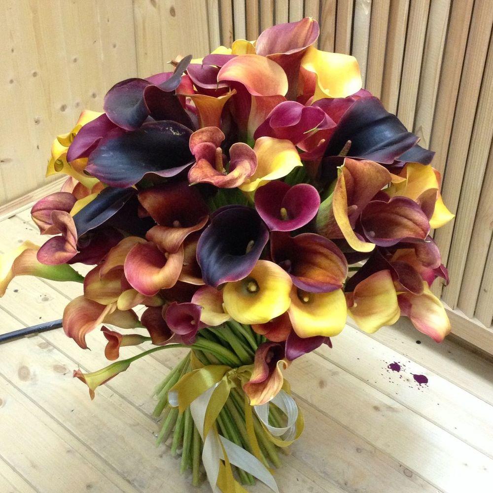 Весельно букеты каллы фото, склад цветов купить