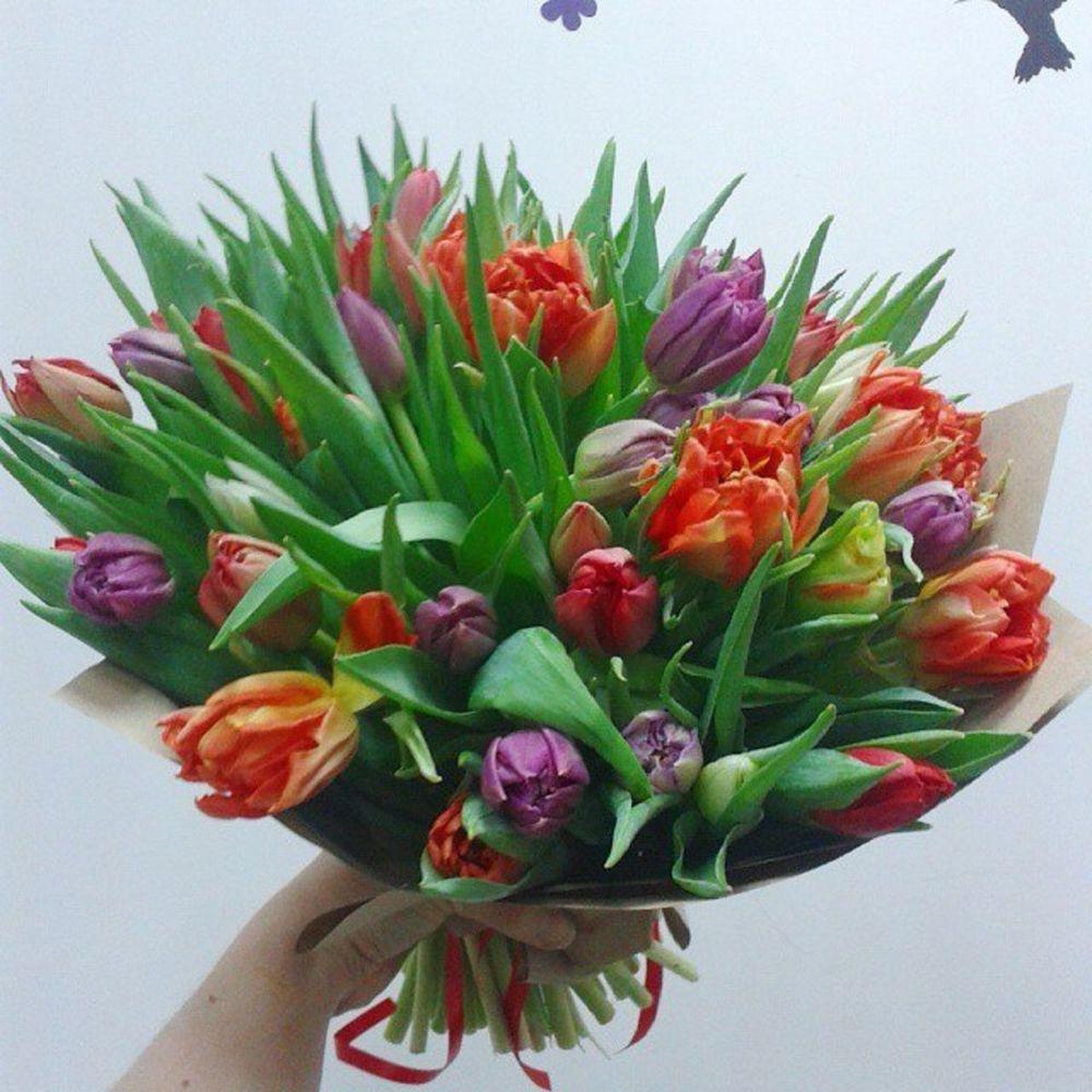 Композиции новый, цена букета тюльпанов 250 рублей какую функцию денег иллюстрирует