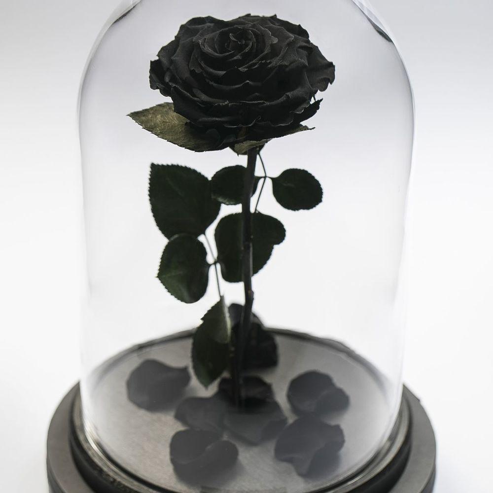 Купить цветы в банке в москве, для