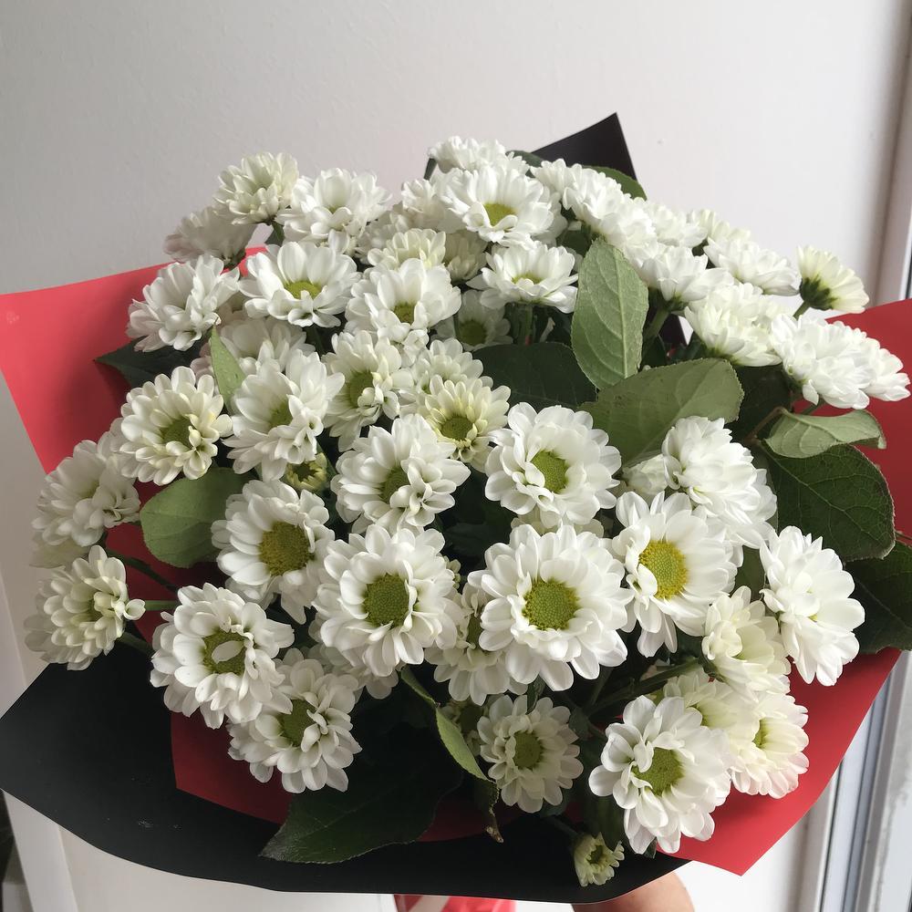 Белые тюльпаны, служба доставки цветов петрозаводск