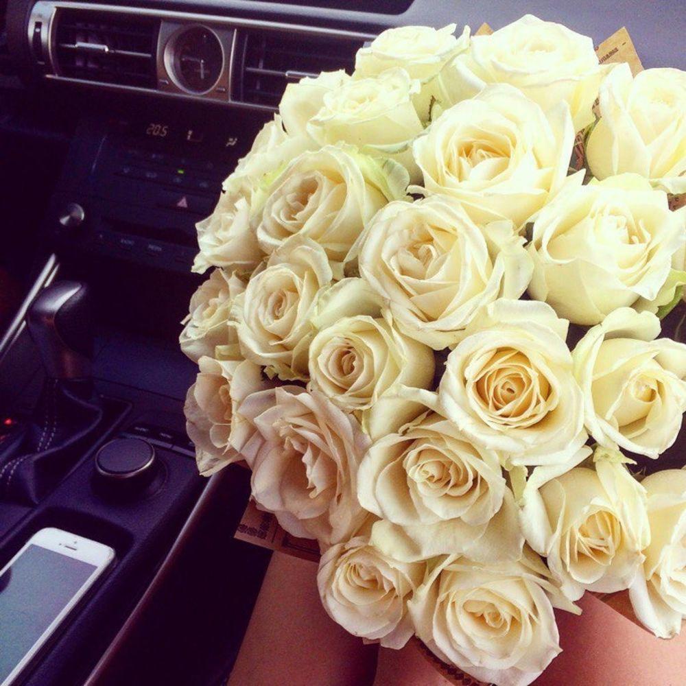 Цветы картинки розы букеты брюнетки реальные