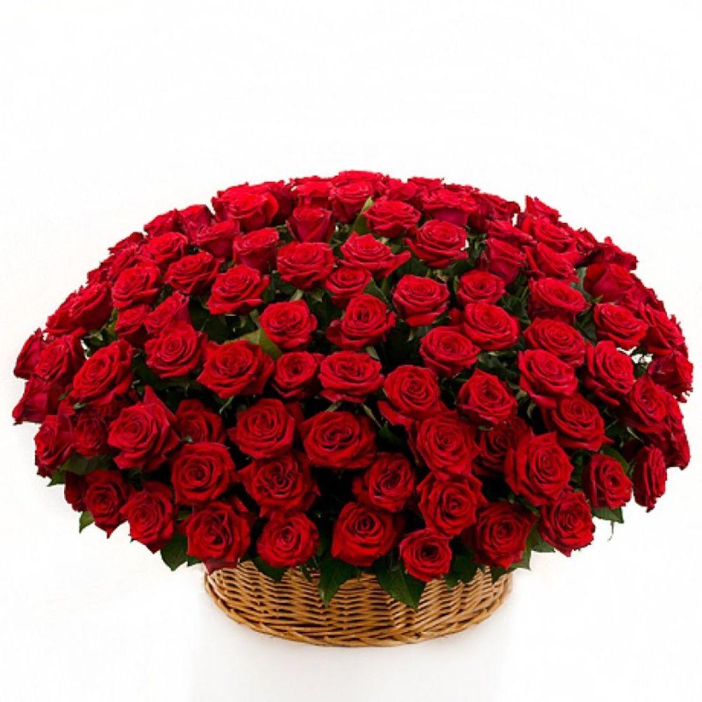Открытка с днем рождения женщине розы красные в корзине, картинки поздравление днем
