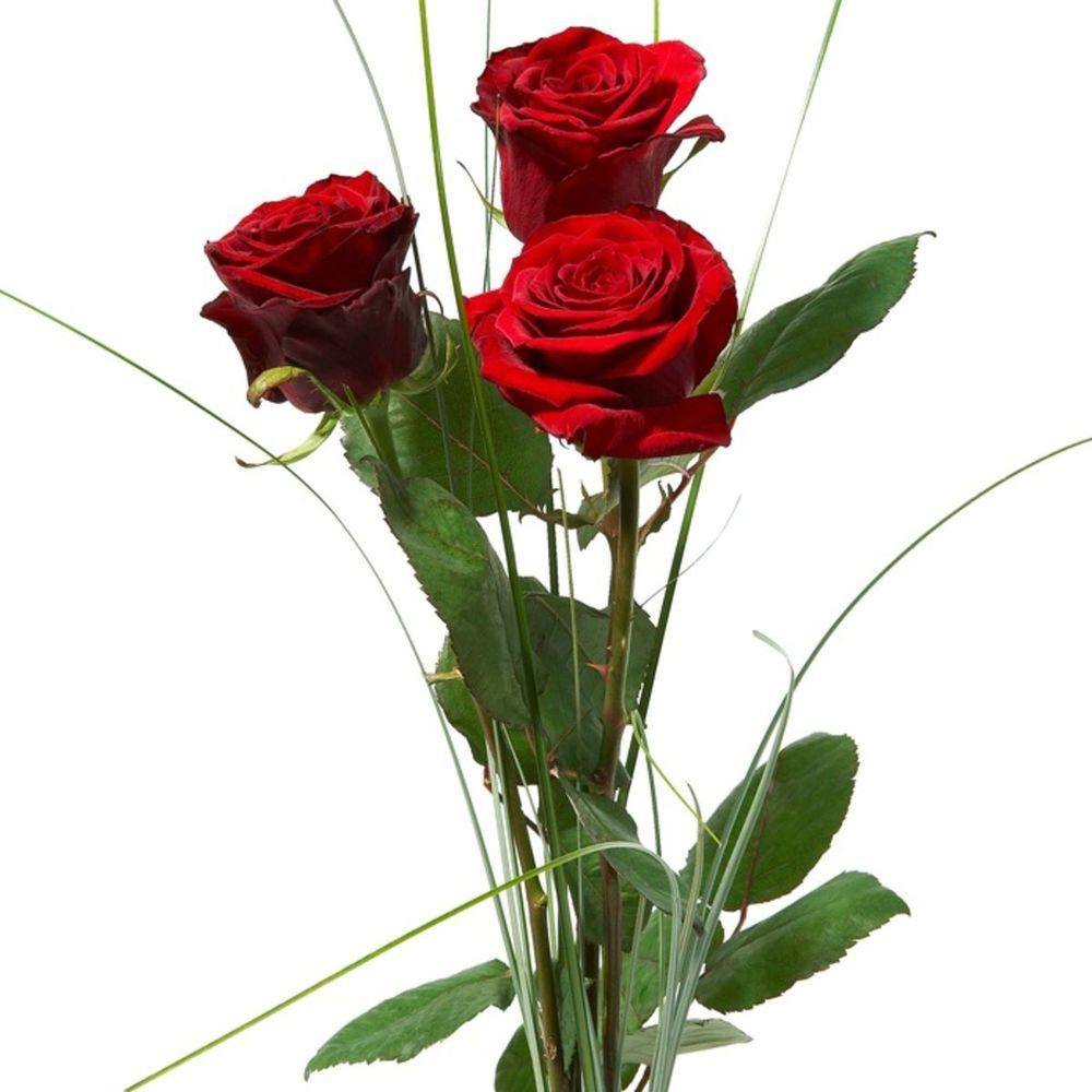 Двор прайс, три розы букет фото