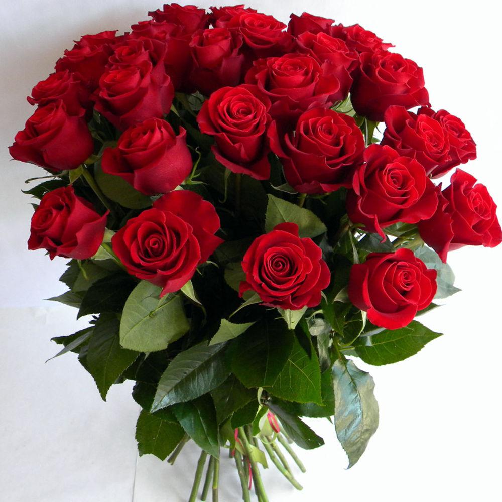 тон букеты роз с пожеланиями телефоне флай сделать