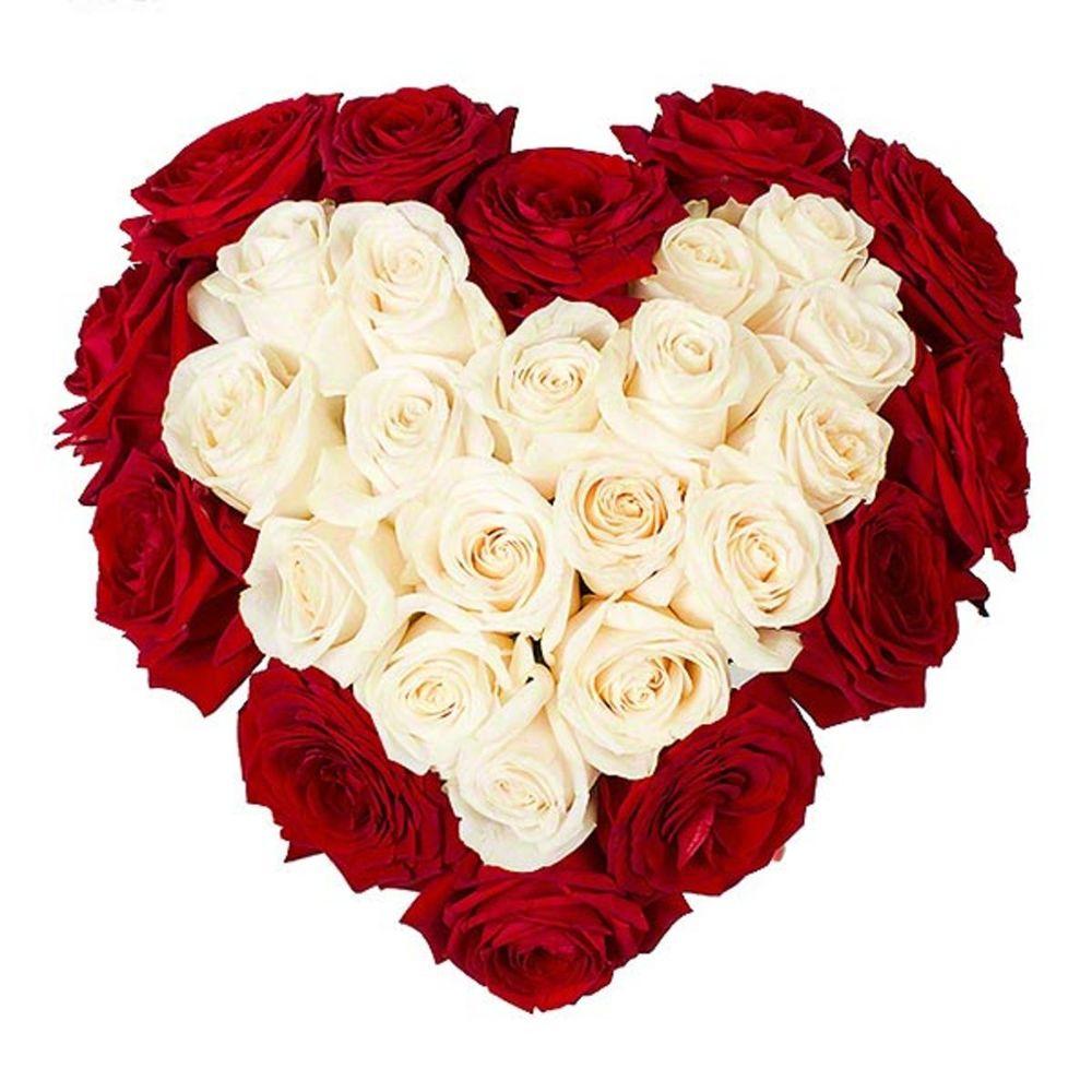 популярность картинки белых роз сердечком почитателей творчества актрисы