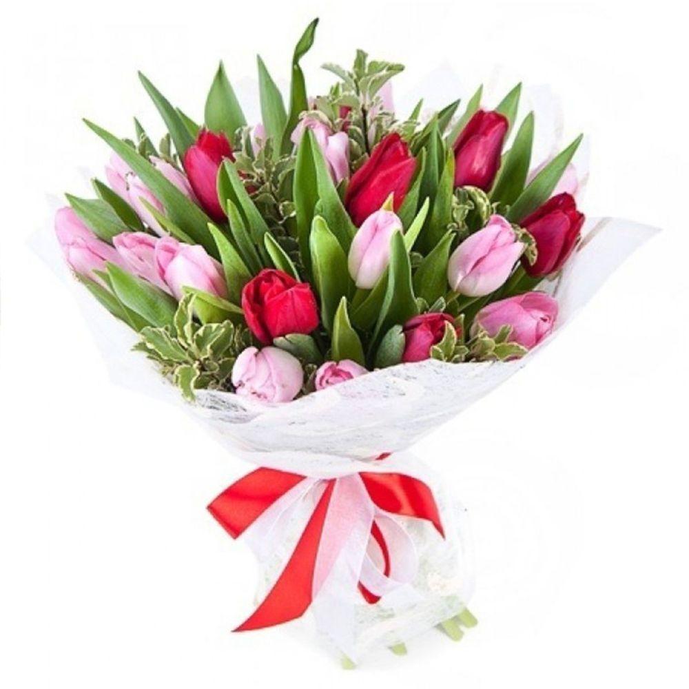 Цветов, букет тюльпанов цена 1 тюльпаны