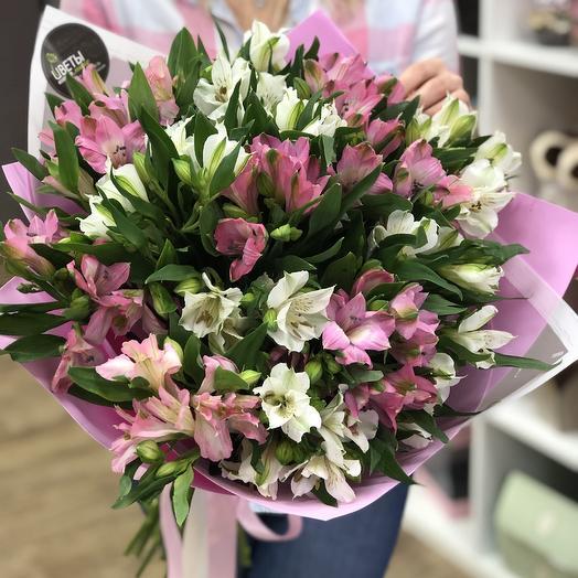 Стойкая альстромерия: букеты цветов на заказ Flowwow