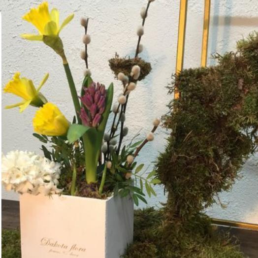 Первоцветы: букеты цветов на заказ Flowwow