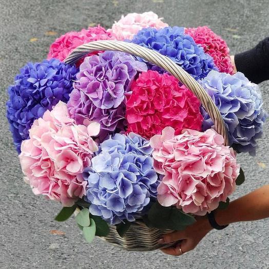Гортензии в корзине 11 шт: букеты цветов на заказ Flowwow