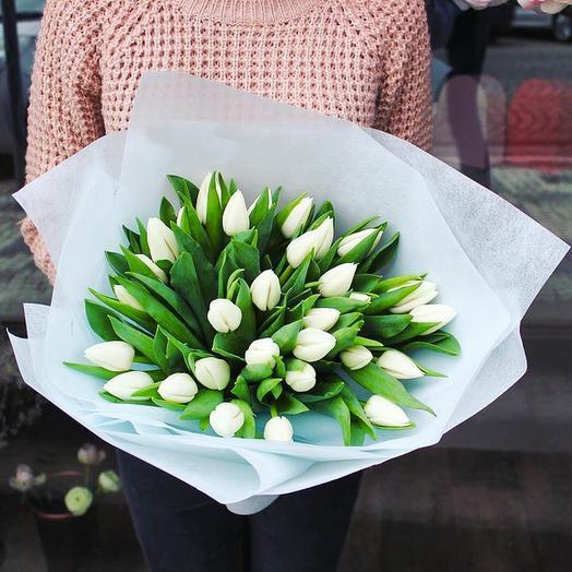 29 белоснежный тюльпан