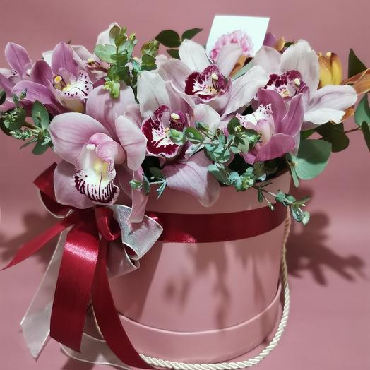 Орхидеи в аквабоксе