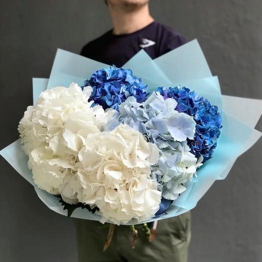 Небесный микс гортензий: букеты цветов на заказ Flowwow