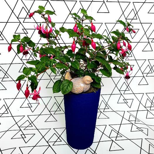 Танец эльфов: букеты цветов на заказ Flowwow