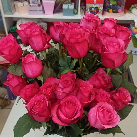 "Розы ""Пинк флойд "" Эквадор"