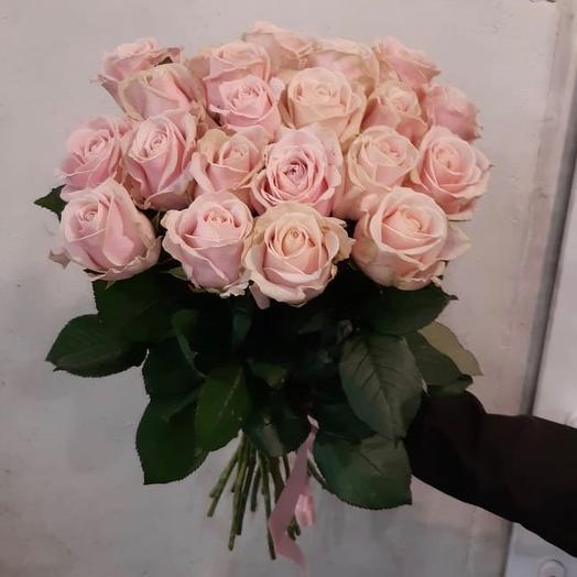 21 Роза талея