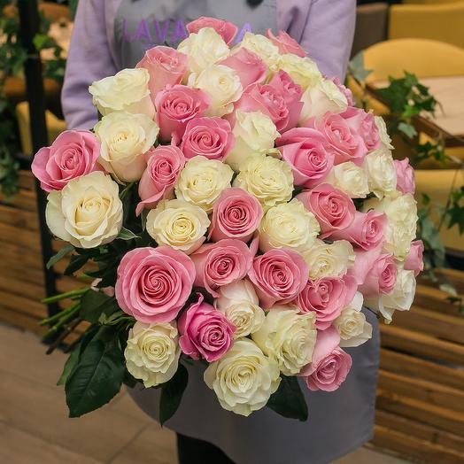 51 бело-розовая роза