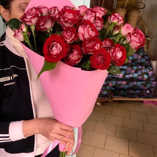 Кустовая роза Би Баблс