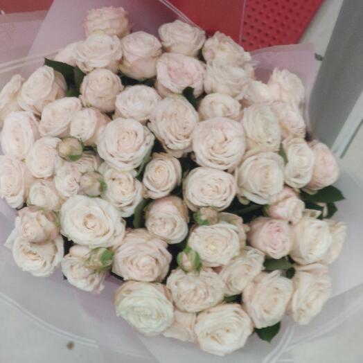 Букет Пионовидные розы Бомбастики