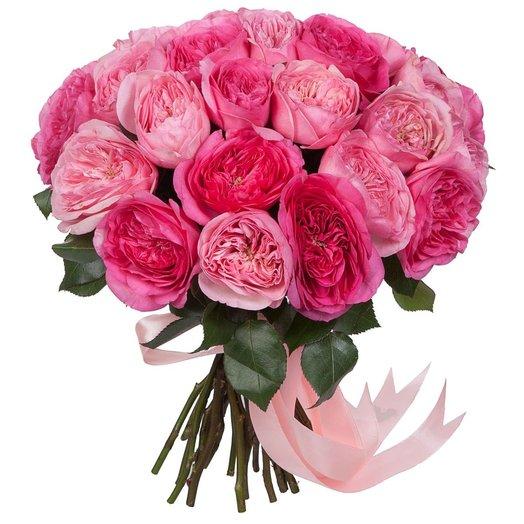 Садовые розы Кейра: букеты цветов на заказ Flowwow
