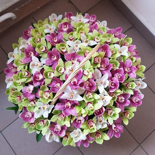 Орхидеи в корзине: букеты цветов на заказ Flowwow