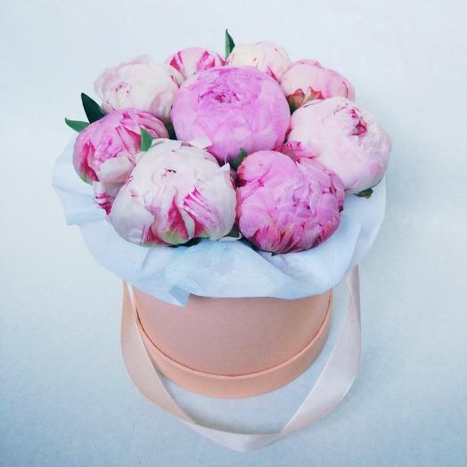 9 нежно-розовых пионов в шляпной коробке: букеты цветов на заказ Flowwow