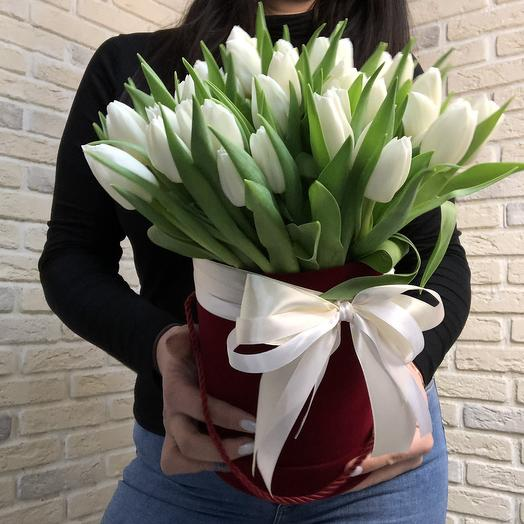 51 белый тюльпан в бархате: букеты цветов на заказ Flowwow