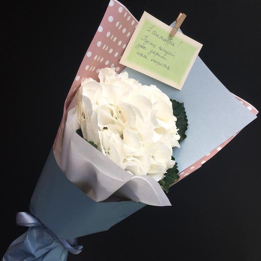 Школьный букет 5: букеты цветов на заказ Flowwow
