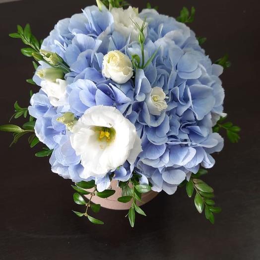 Цветы в коробке Гортензия
