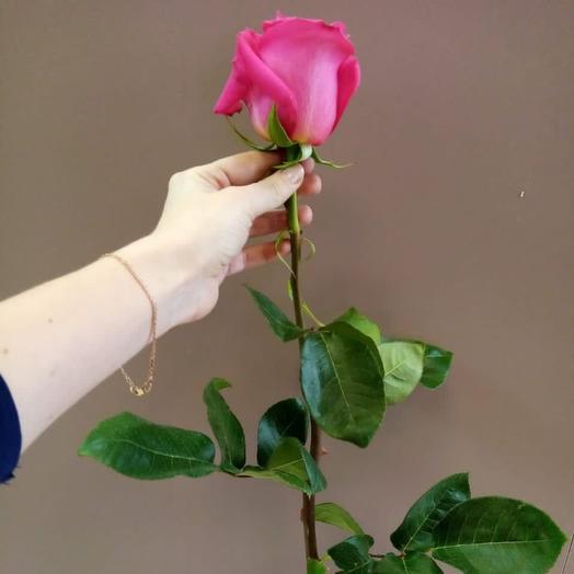 Роза микс Эквадор , 40 см
