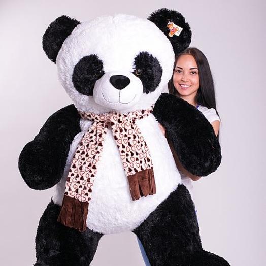 Панда 170см