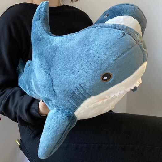 Акулы