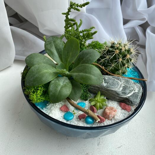 Флорариум «В морском стиле»