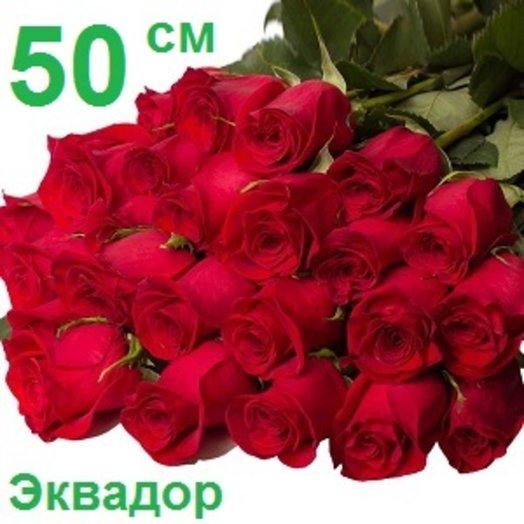 25 эквадорских роз 50 см: букеты цветов на заказ Flowwow