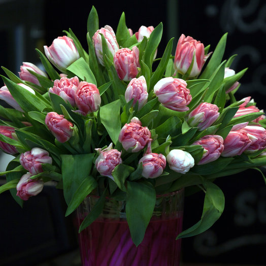 Тюльпаны розовые микс