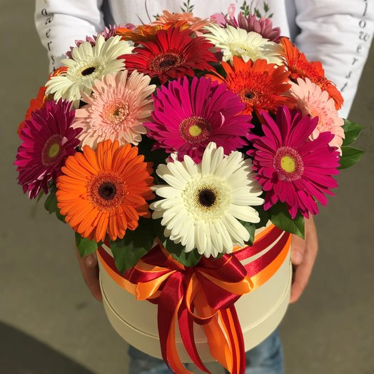 Коробки с цветами. Герберы 17 шт . N192: букеты цветов на заказ Flowwow