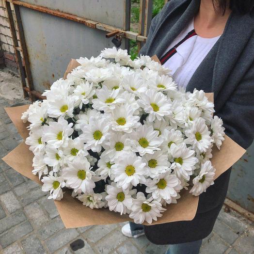 11 белых ромашковых хризантем. Код 19003