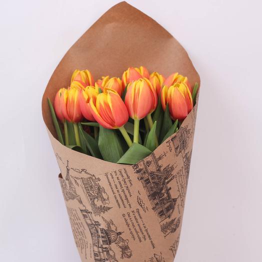 19 Тюльпанов Голландия Craft
