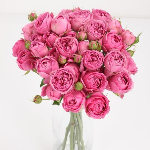 """Misty Bubbles 9"": букеты цветов на заказ Flowwow"