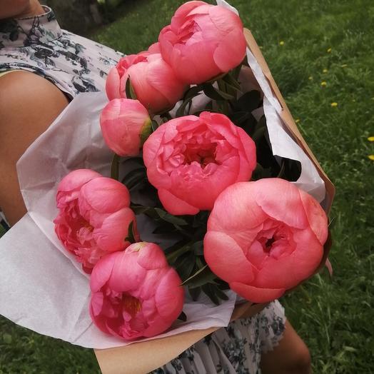 7 коралловых пионов: букеты цветов на заказ Flowwow