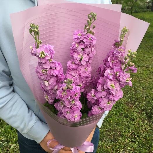 Mattiola: букеты цветов на заказ Flowwow