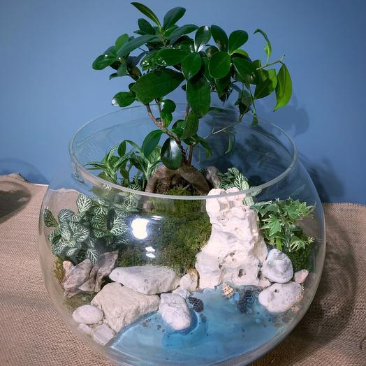 Мега флорариум