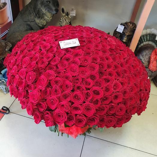 401 роза