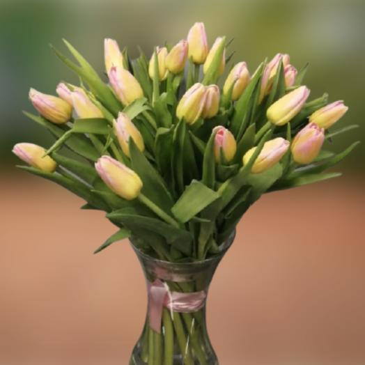 Букет из 25 тюльпанов «Том Поус»