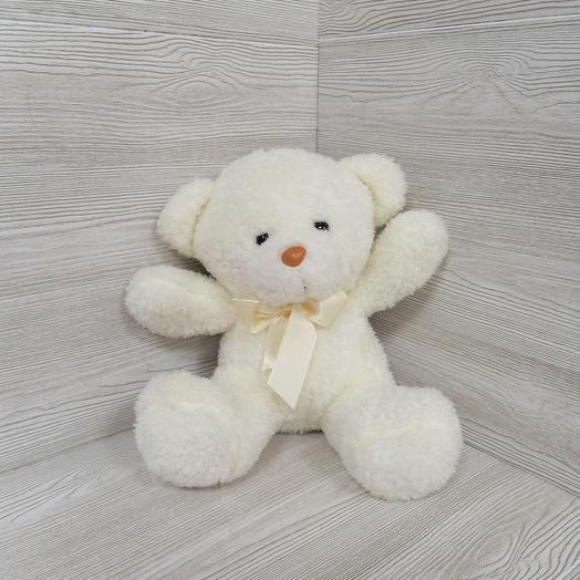 Cream bear 🐻
